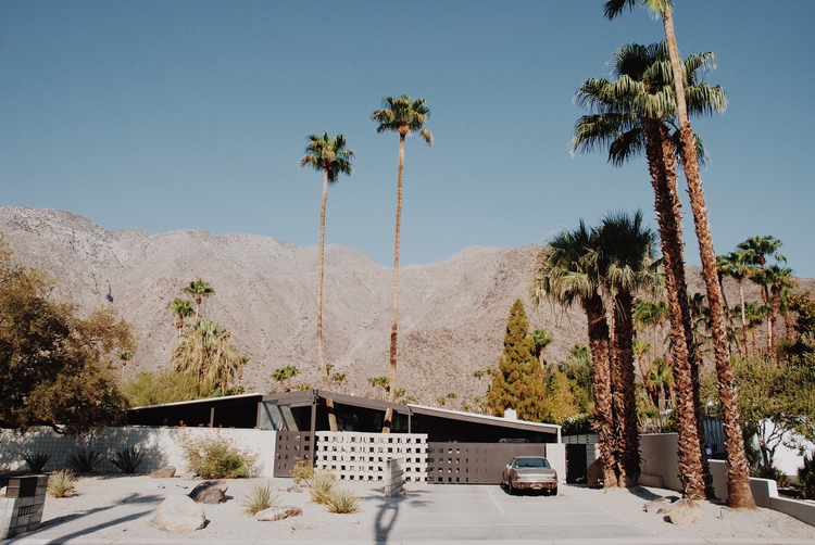 palm-springs-foreign-lands-04