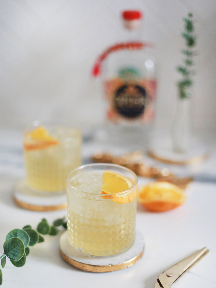gin-lemon-cocktail-01
