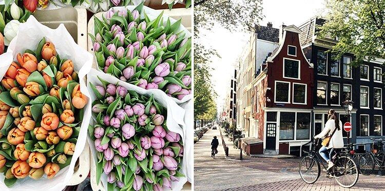 Amsterdam-Polabur--SB-05