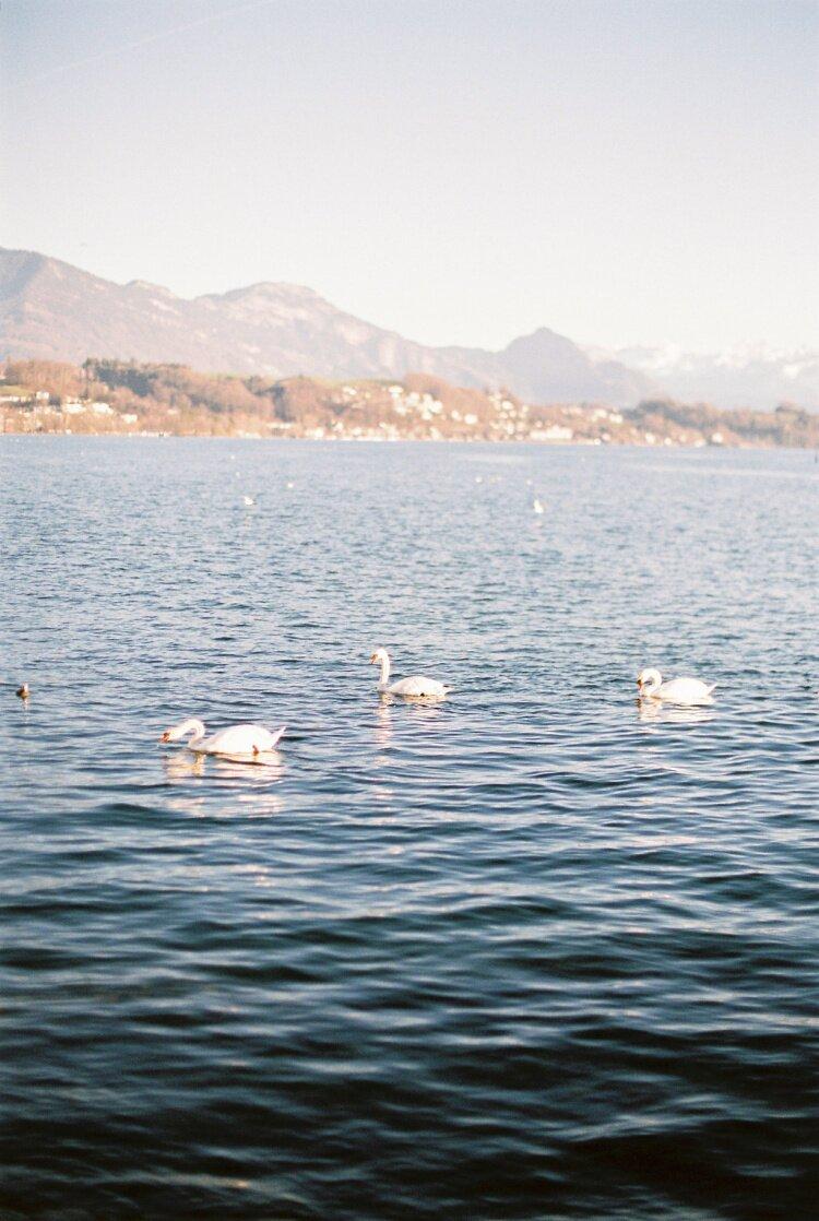 AT_Luzern-11
