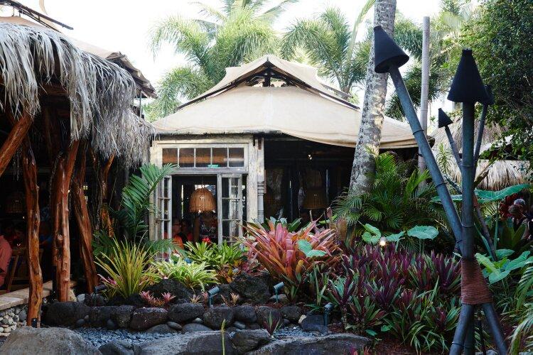 nicolefranzen hawaii SB 13