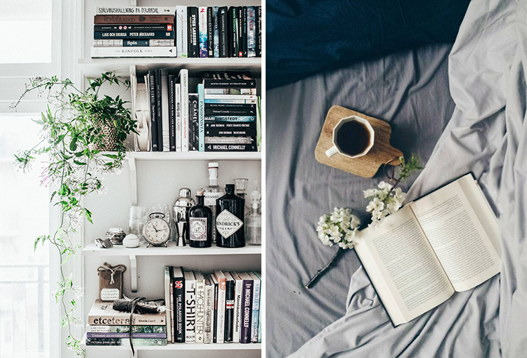 4-books-to-bring-you-back-to-reading-01