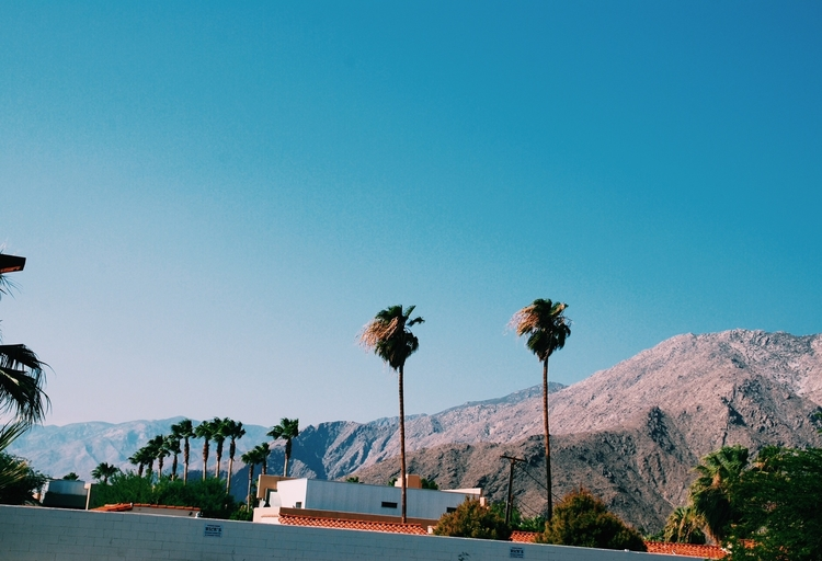 palm-springs-foreign-lands-01