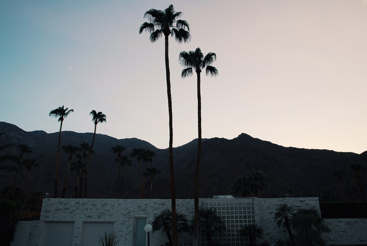 palm-springs-foreign-lands