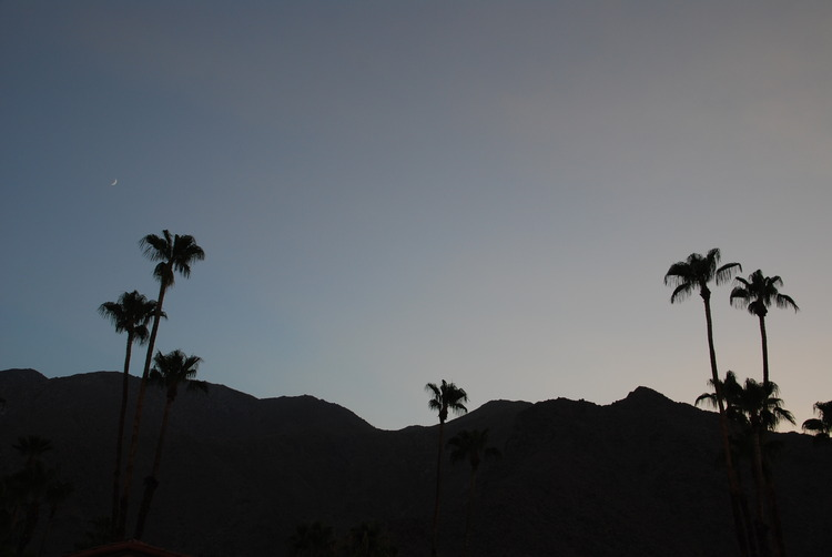 palm-springs-foreign-lands-14